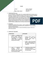 Silabo II Bimestre Formacion Cristiana.docx