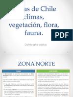 Chile Temperatura, Vegetacion, Clima y Más