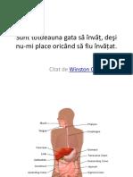 Gastroenterologie Curs 1