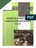 Diagnostico Actual Bio Cajamarca