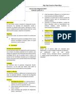 GUIA-DE-CLASE-MAGISTRAL-N4-teoria-sociologica-III.docx