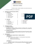 6ta Practica Reacciones Exotermica y Endotermica - 2do Grupo