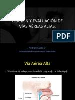 Examen Respiratorio Vias Altas