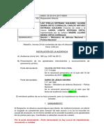 Protocolo Audiencia Inicial 4