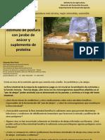 alimentacic3b3n-de-abejas-para-estc3admulo-de-postura (1).pptx