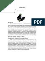 DocGo.Net-BERENJENA.pdf