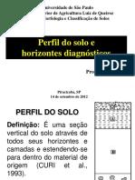 Aula 6 - Horizontes Diagnosticos