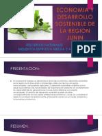 Economia y Desarrollo Sostenible de La Region Junin