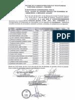 Resultado Final Conv 2 Nec Huanuco