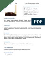 Curriculum Avilés Dìaz Miguel Angel