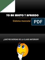 Sistema Muscular y Esquelético4º