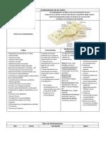 329383821-Tipos-de-Fallas-y-Deslizamientos-de-Los-Suelos.docx