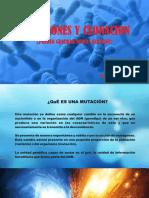 Mutacion y Clonacion