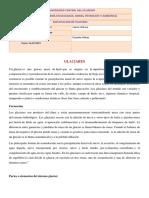 337032599-Partes-o-Elementos-Del-Sistema-Glaciar.docx