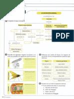 taller-excrecion-animales.pdf