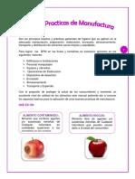 177623286 Manual de Buenas Practicas de Manufactura en Frutas y Hortalizas2