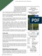 Burung Unta - Wikipedia Bahasa Indonesia, Ensiklopedia Bebas