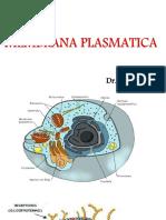 MENBRANA-PLASMATICA.pdf