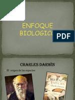 Enfoque Biologico