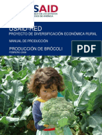 RED Manual Produccion Brocoli 06-08