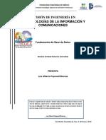 FBD investigacion.docx