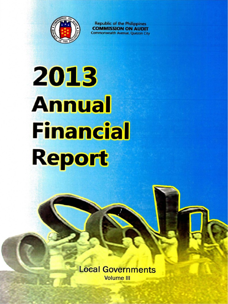 2013_AFR_LGUs_Vol3 pdf | Revenue | Audit