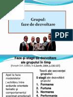 13. Grupul.faze.pdf
