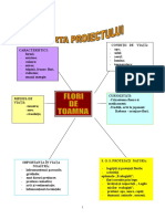 proiecttematic_floridetoamna