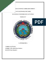 La Industria Petroquimica (Autoguardado)