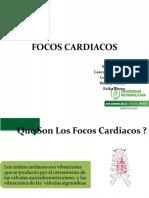 Focos Cardiacos (1)