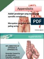 Appendisitis Slide
