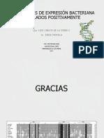 EL ESTRÉS SOCIAL Y LA REACTIVACIÓN DEL VIRUS.pptx