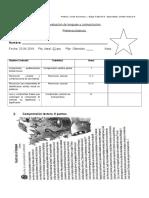 Primera Evaluacion de Lenguaje Diferenciada Alexander Doc