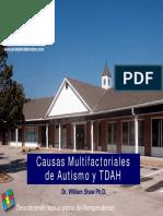 Autismo Multifactorial 2
