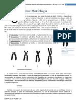 texto complementar cromossomos com estudo dirigido - 8º Ano CAJE