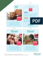 Cartas escolha a calma.pdf