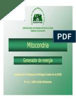 10mitocondriaecortes-130921165237-phpapp02.pdf