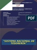 Sistema Nacional de Tesoreria