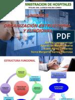 2,1 Organizacion Estructural y Funcional