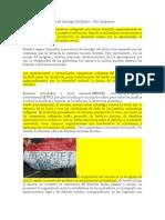 Movimiento Campesino de Santiago Del Estero
