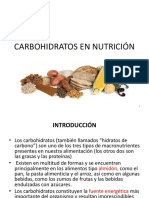 3. Carbohidratos en Nutrici n