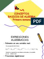 CLASE1conceptosbasicosdealgebra.ppt