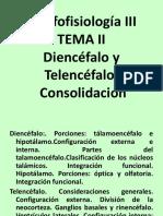 Diencéfalo y Telencéfalo
