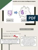 Inmunologia Citocinas