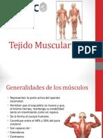 9. Sistema Muscular