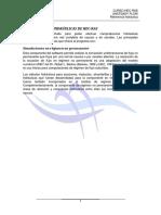 HEC-RAS 7 UNSTEADY U0 Referencia Hidraulica
