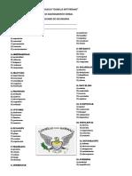 EXAMENES PARCIALES.docx