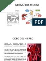 METABOLISMO DEL HIERRO.pptx