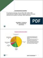 Tema11_genoma