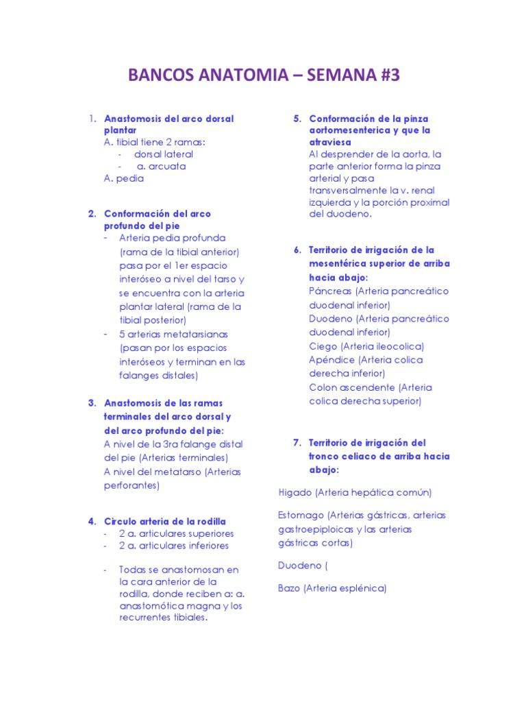 Bancos Anatomía - SEMANA #3